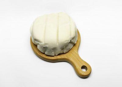 Vegan Brie